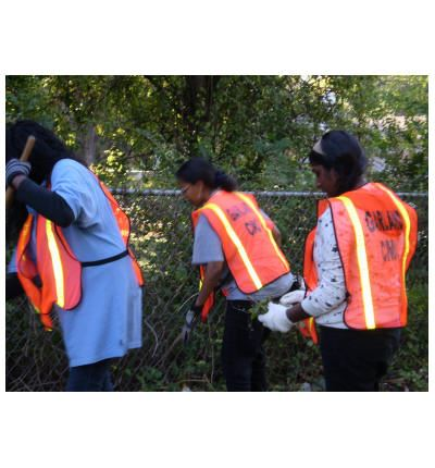 Three Volunteers Cleaning Up Weeds